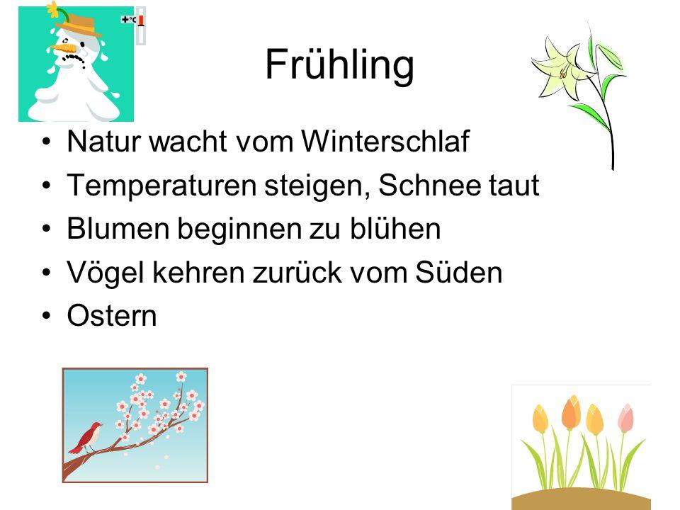 Frühling Natur wacht vom Winterschlaf Temperaturen steigen, Schnee taut Blumen beginnen zu blühen Vögel kehren zurück vom Süden Ostern