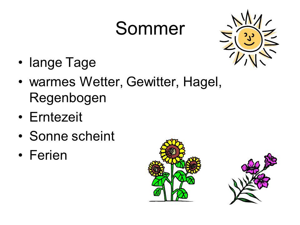 Sommer lange Tage warmes Wetter, Gewitter, Hagel, Regenbogen Erntezeit Sonne scheint Ferien