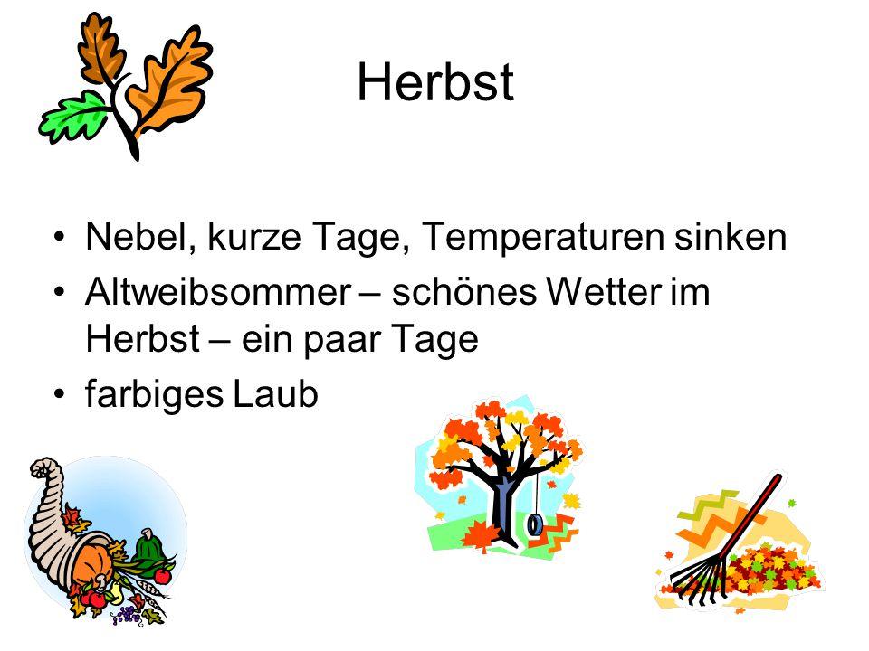 Herbst Nebel, kurze Tage, Temperaturen sinken Altweibsommer – schönes Wetter im Herbst – ein paar Tage farbiges Laub
