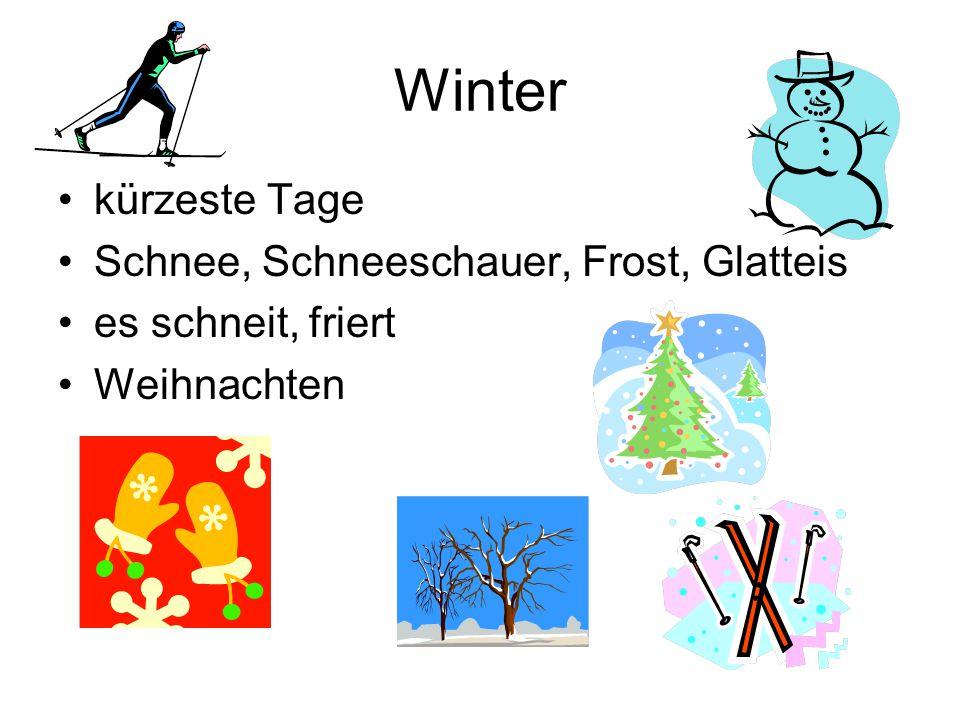 Winter kürzeste Tage Schnee, Schneeschauer, Frost, Glatteis es schneit, friert Weihnachten