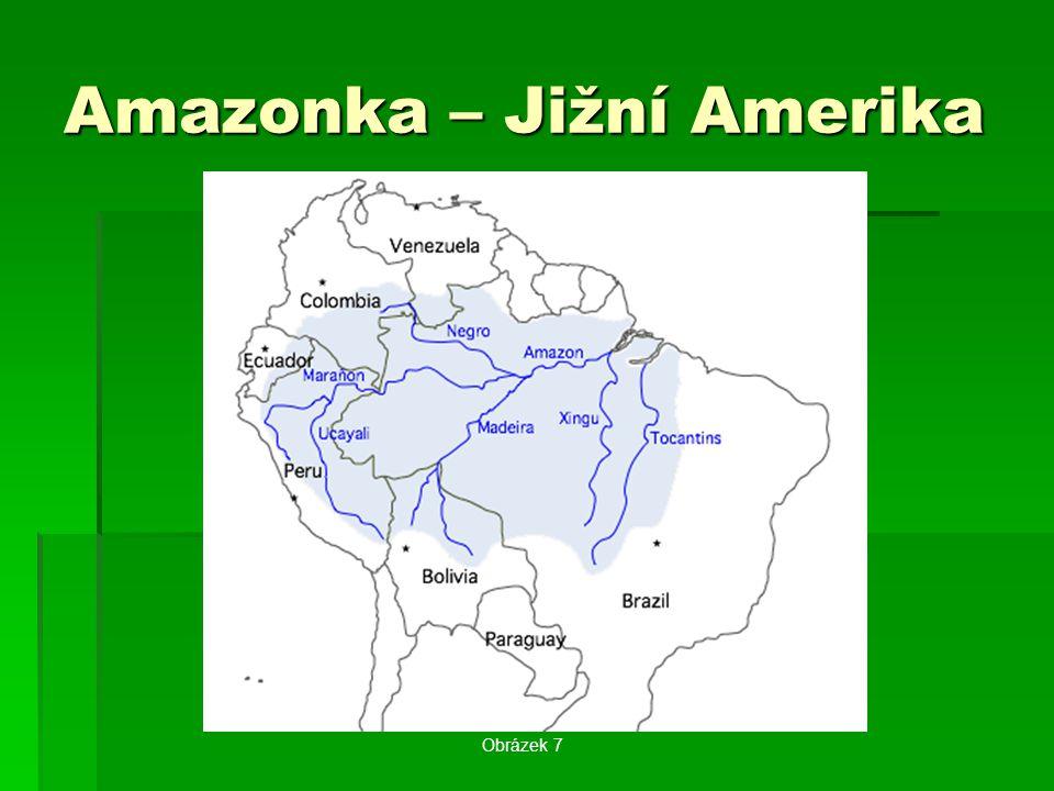 Amazonka – Jižní Amerika Obrázek 7