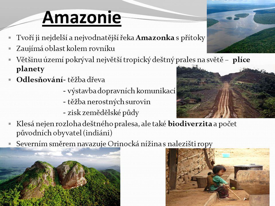 Amazonie  Tvoří ji nejdelší a nejvodnatější řeka Amazonka s přítoky  Zaujímá oblast kolem rovníku  Většinu území pokrýval největší tropický deštný