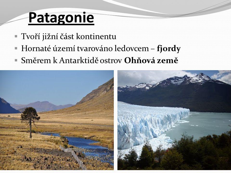 Patagonie  Tvoří jižní část kontinentu  Hornaté území tvarováno ledovcem – fjordy  Směrem k Antarktidě ostrov Ohňová země