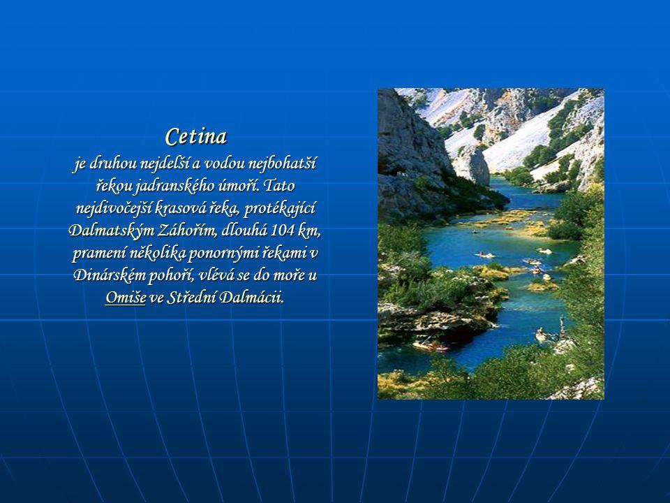Cetina je druhou nejdelší a vodou nejbohatší řekou jadranského úmoří. Tato nejdivočejší krasová řeka, protékající Dalmatským Záhořím, dlouhá 104 km, p