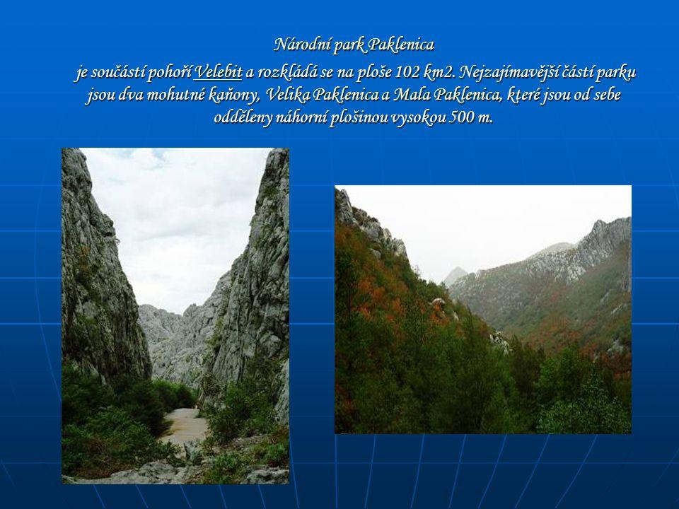 Národní park Paklenica Národní park Paklenica je součástí pohoří Velebit a rozkládá se na ploše 102 km2. Nejzajímavější částí parku jsou dva mohutné k