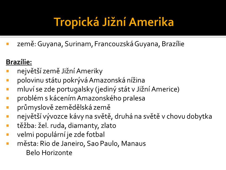  země: Guyana, Surinam, Francouzská Guyana, Brazílie Brazílie:  největší země Jižní Ameriky  polovinu státu pokrývá Amazonská nížina  mluví se zde