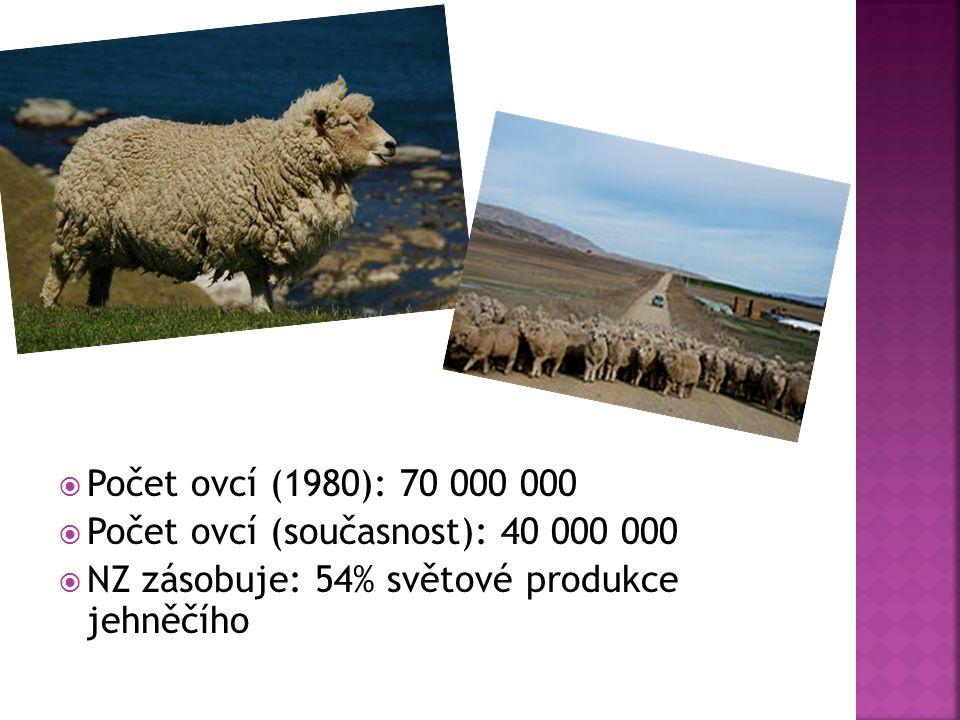  Počet ovcí (1980): 70 000 000  Počet ovcí (současnost): 40 000 000  NZ zásobuje: 54% světové produkce jehněčího