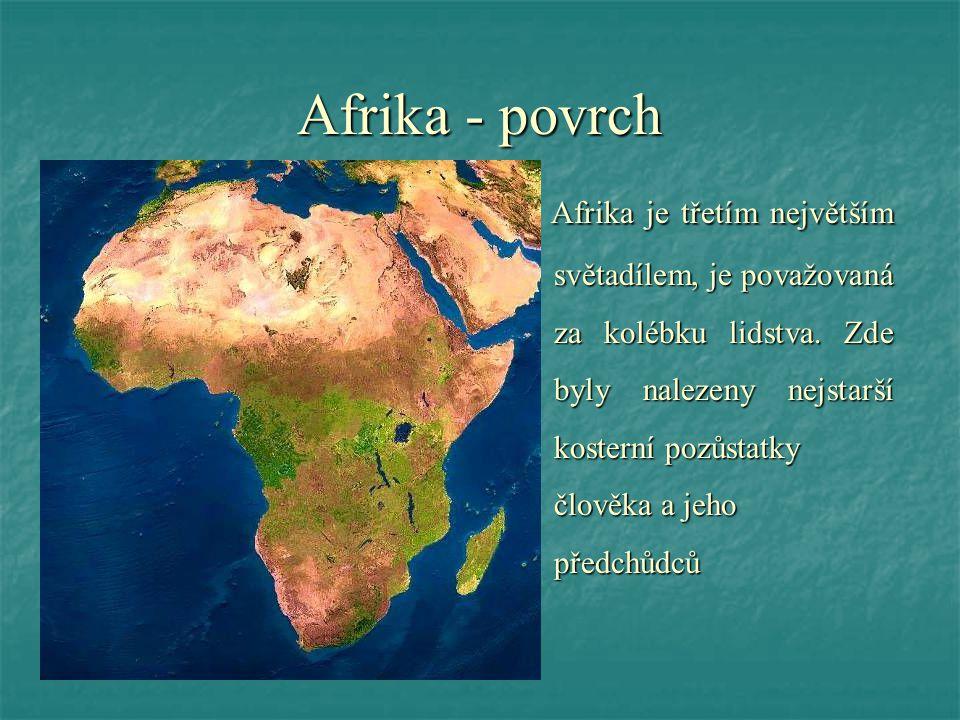 Afrika - povrch A Afrika je třetím největším světadílem, je považovaná za kolébku lidstva. Zde byly nalezeny nejstarší kosterní pozůstatky člověka a j