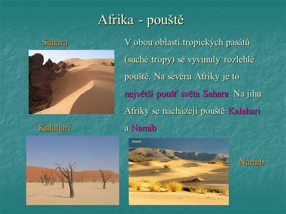 Afrika - pouště SaharaV obou oblasti tropických pasátů (suché tropy) se vyvinuly rozlehlé pouště. Na severu Afriky je to největší poušť světa Sahara.