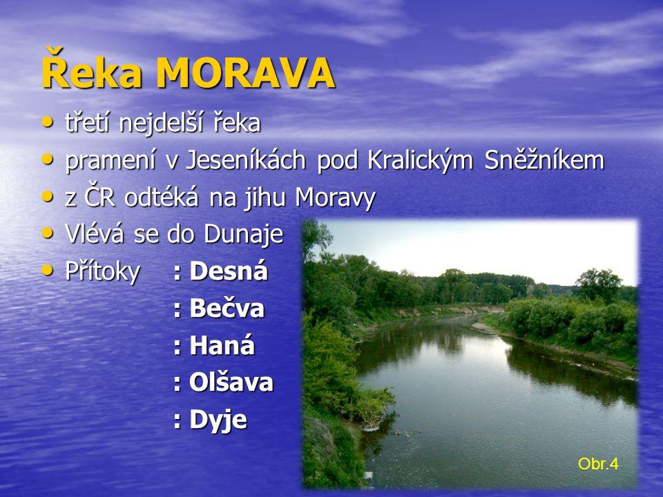 Řeka MORAVA třetí nejdelší řeka třetí nejdelší řeka pramení v Jeseníkách pod Kralickým Sněžníkem pramení v Jeseníkách pod Kralickým Sněžníkem z ČR odtéká na jihu Moravy z ČR odtéká na jihu Moravy Vlévá se do Dunaje Vlévá se do Dunaje Přítoky : Desná Přítoky : Desná : Bečva : Haná : Olšava : Dyje Obr.4
