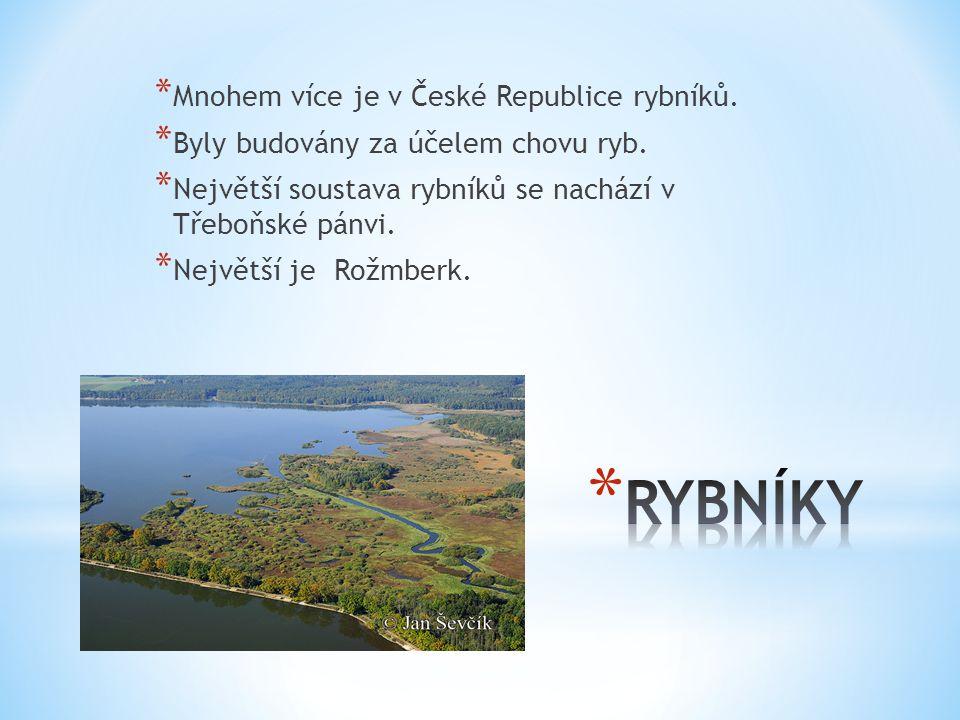 * Mnohem více je v České Republice rybníků. * Byly budovány za účelem chovu ryb. * Největší soustava rybníků se nachází v Třeboňské pánvi. * Největší