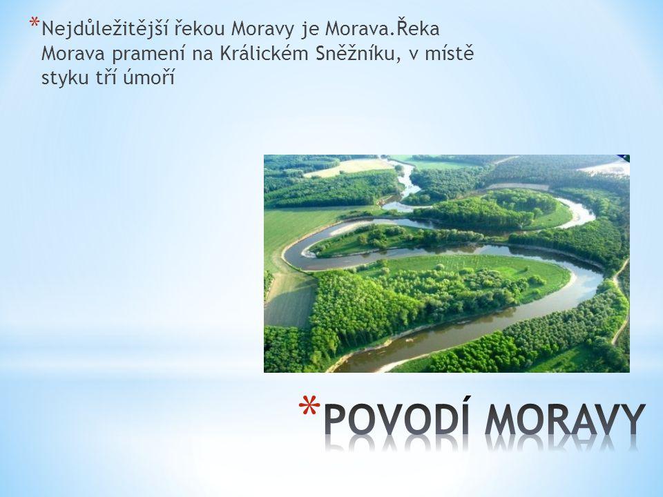 * Nejdůležitější řekou Moravy je Morava.Řeka Morava pramení na Králickém Sněžníku, v místě styku tří úmoří
