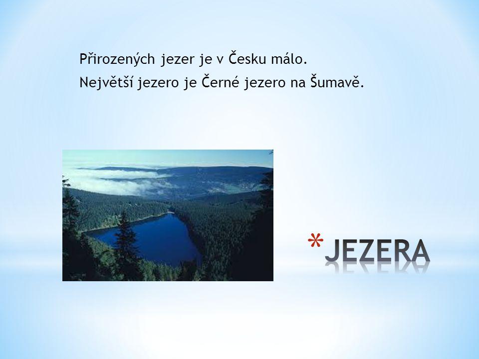 Přirozených jezer je v Česku málo. Největší jezero je Černé jezero na Šumavě.