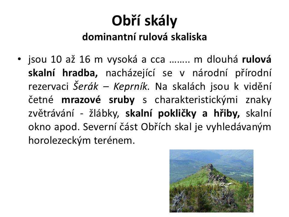 Obří skály dominantní rulová skaliska jsou 10 až 16 m vysoká a cca …….. m dlouhá rulová skalní hradba, nacházející se v národní přírodní rezervaci Šer