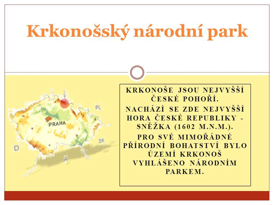 Obsah Rozdělení do zón Geologie Vegetační stupně Vodstvo Krkonošské jámy Podnebí Turistika Závěr Sněžka