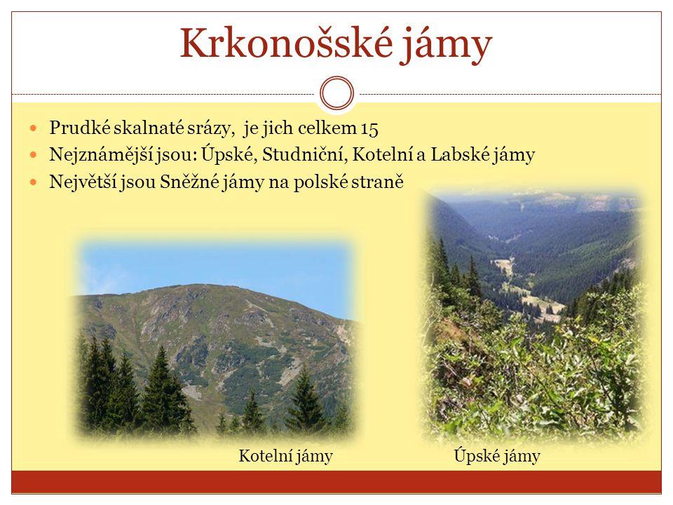 Krkonošské jámy Prudké skalnaté srázy, je jich celkem 15 Nejznámější jsou: Úpské, Studniční, Kotelní a Labské jámy Největší jsou Sněžné jámy na polské