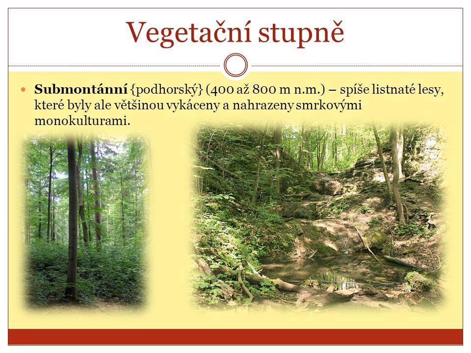 Vegetační stupně Submontánní {podhorský} (400 až 800 m n.m.) – spíše listnaté lesy, které byly ale většinou vykáceny a nahrazeny smrkovými monokultura