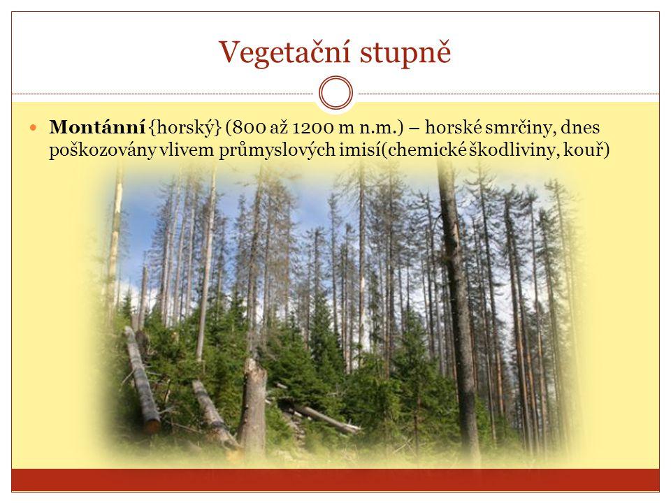 Vegetační stupně Subalpínský (1200 až 1450 m n.m.) - v tomto stupni, na náhorních plošinách a v jejich okolí, se koncentrují nejcennější ekosystémy Krkonoš: klečové porosty, přirozené i druhotné smilkové louky a severská rašeliniště.