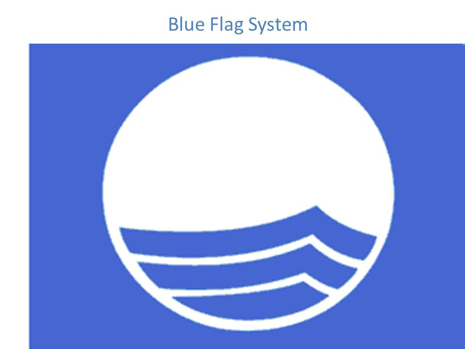 Blue Flag System