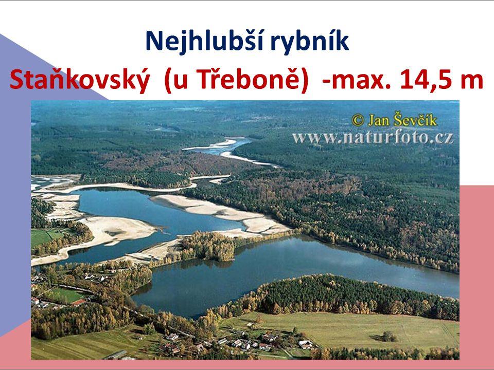 Nejhlubší rybník Staňkovský (u Třeboně) -max. 14,5 m