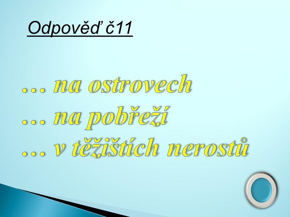 Otázka č.11