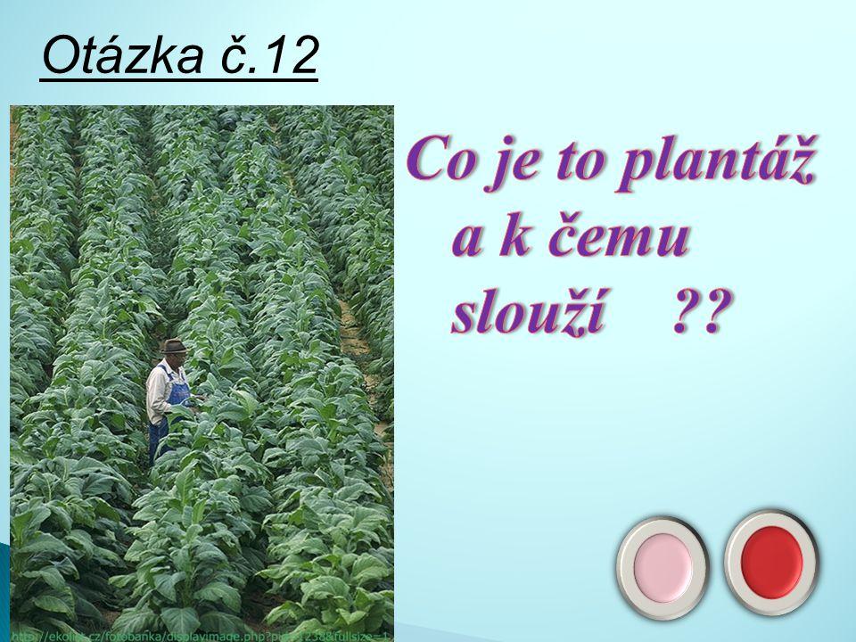 Odpověď č11