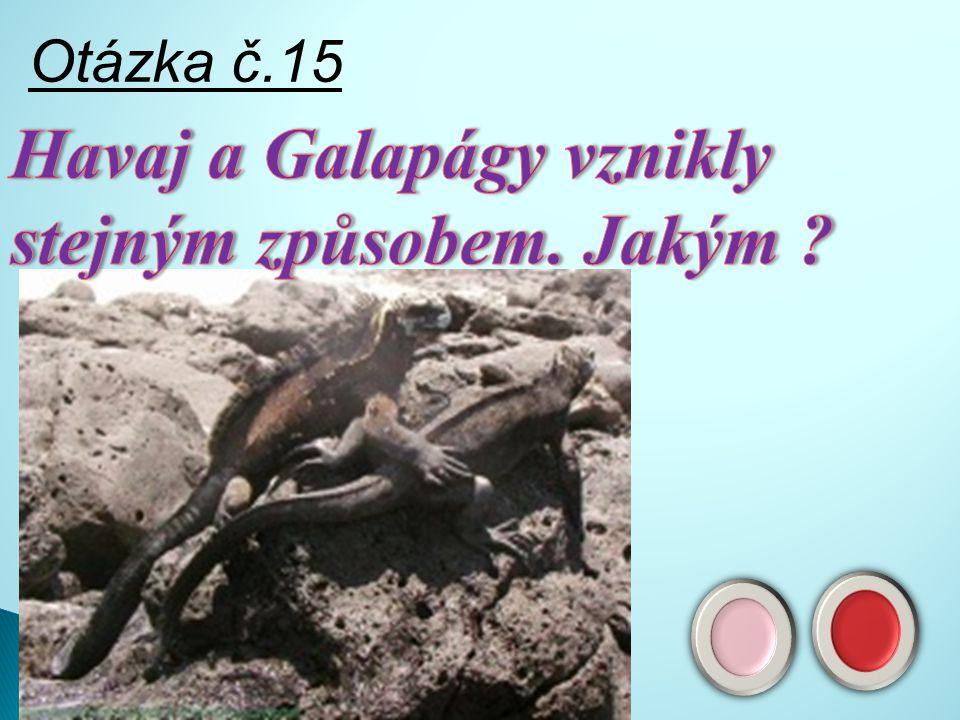Odpověď č.14