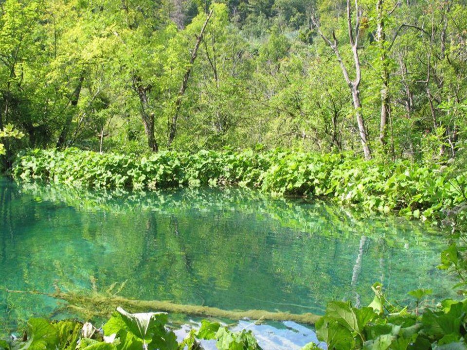 Nejvýše položené jezero leží v nadmořské výšce 636 metrů a poslední, nejnižší najdete o 8 km jižněji a leží v nadmořské výšce 133 metrů.