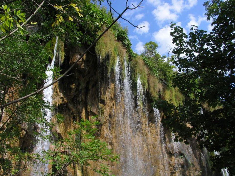 Jezerní systém, jehož název lze lehce odvodit od říčky Plitvice, tvořící nejvyšší vodopád celé oblasti, čítající 78 metrů, se nepokládá za starší než