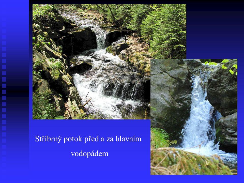 Pohled na vodopád shora Příroda v okolí vodopádu