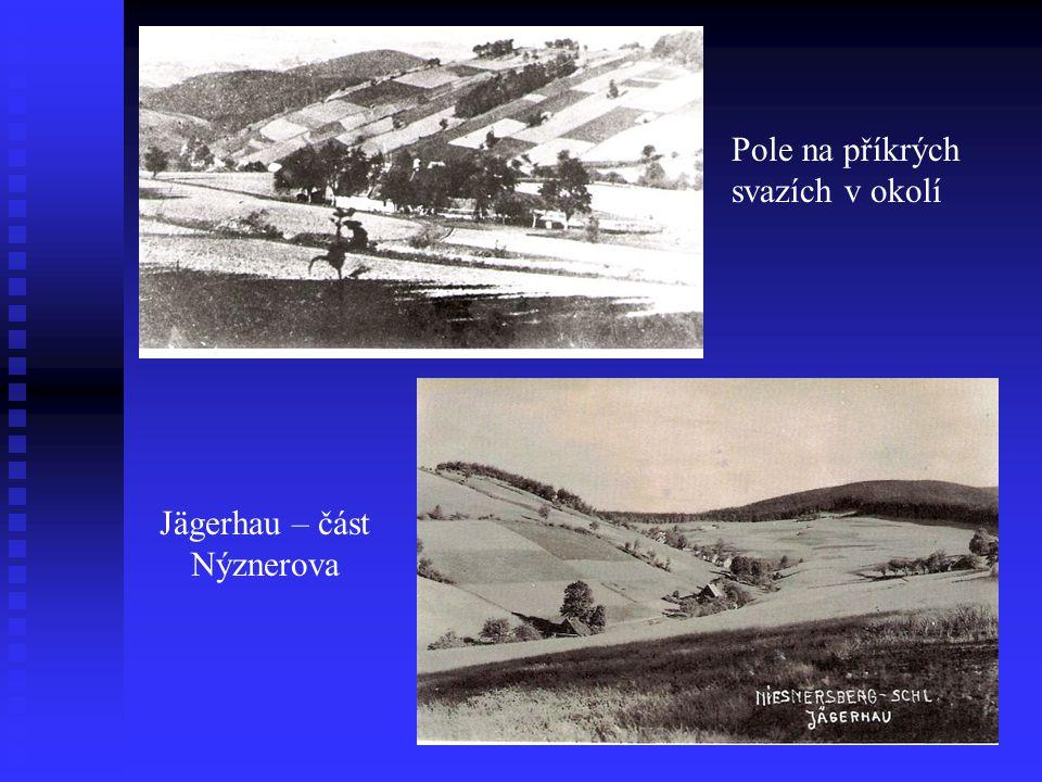 Pole na příkrých svazích v okolí Jägerhau – část Nýznerova