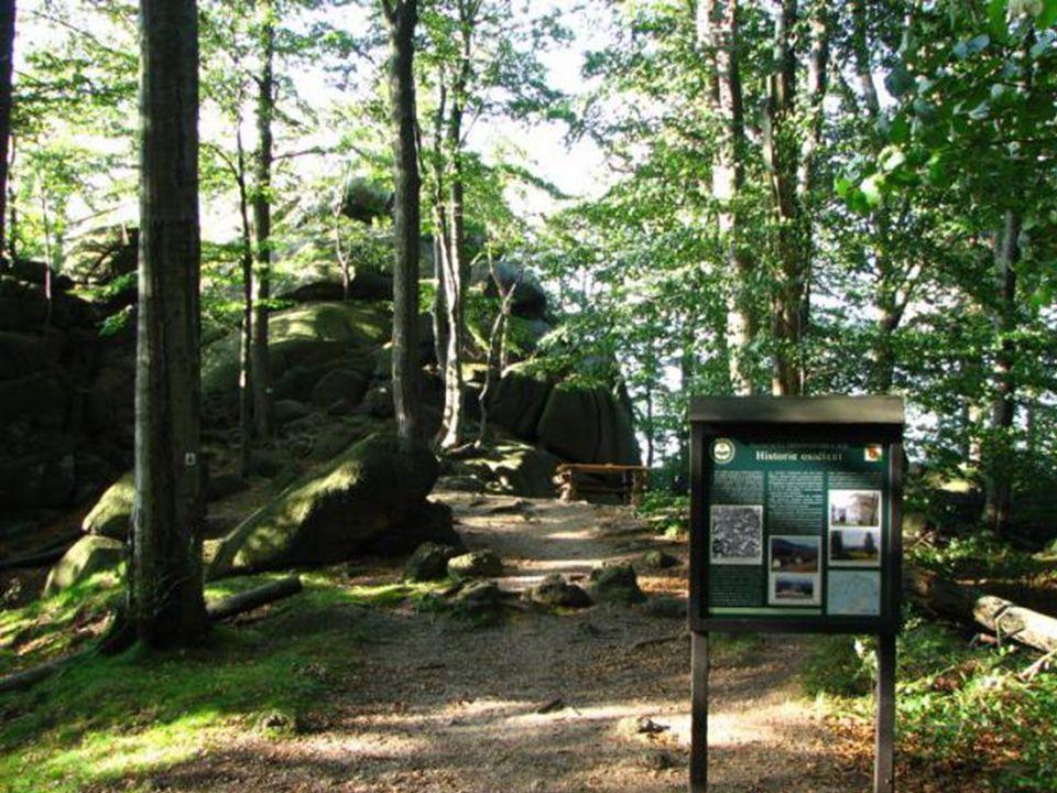40 Dále pokračujeme po červené 1,3 km chvíli do kopce a pak po hřebeni bukovým lesem k rozcestníku Ořešník-vyhlídka vyhlídka je 250 m vzdálená od rozcestníku a patří také k těm nejpěknějším v okolí