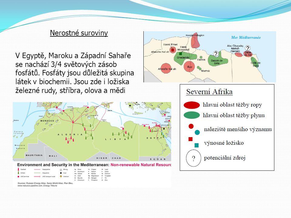 Nerostné suroviny V Egyptě, Maroku a Západní Sahaře se nachází 3/4 světových zásob fosfátů. Fosfáty jsou důležitá skupina látek v biochemii. Jsou zde