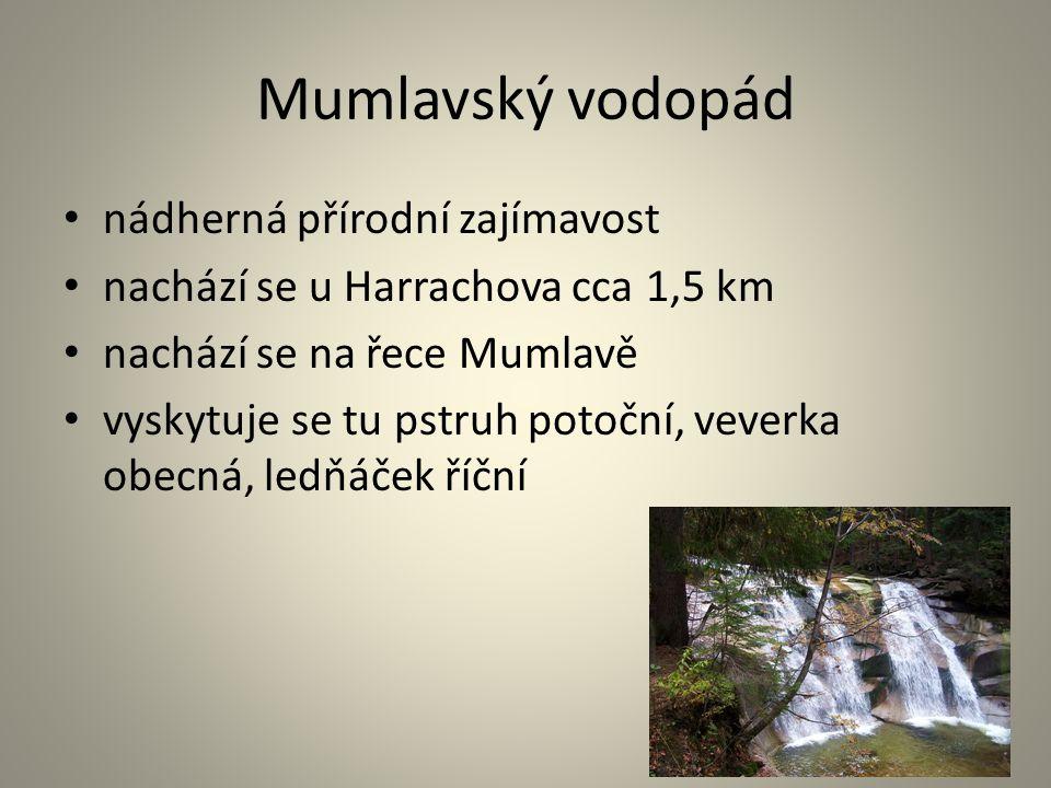 Mumlavský vodopád nádherná přírodní zajímavost nachází se u Harrachova cca 1,5 km nachází se na řece Mumlavě vyskytuje se tu pstruh potoční, veverka o