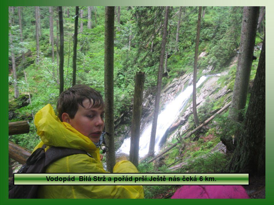 17.7. Déšť nás zastihl na Černém jezeře a pršelo až na Hojsovu Stráž- 20 km