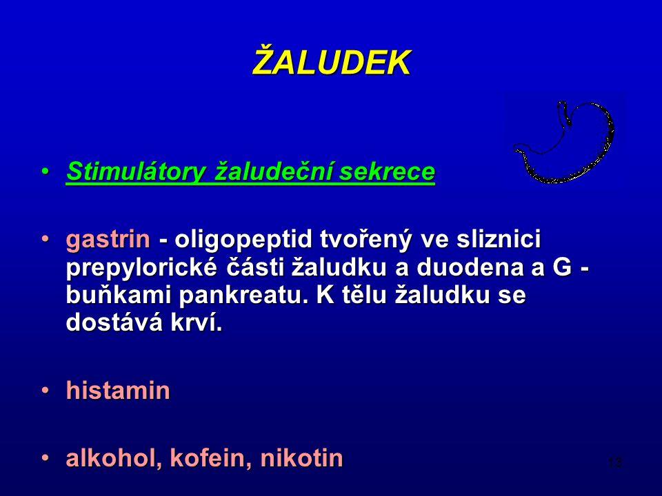 13 ŽALUDEK Stimulátory žaludeční sekreceStimulátory žaludeční sekrece gastrin - oligopeptid tvořený ve sliznici prepylorické části žaludku a duodena a
