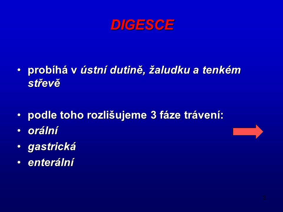 3 DIGESCE probíhá v ústní dutině, žaludku a tenkém střevě podle toho rozlišujeme 3 fáze trávení: orální gastrická enterální