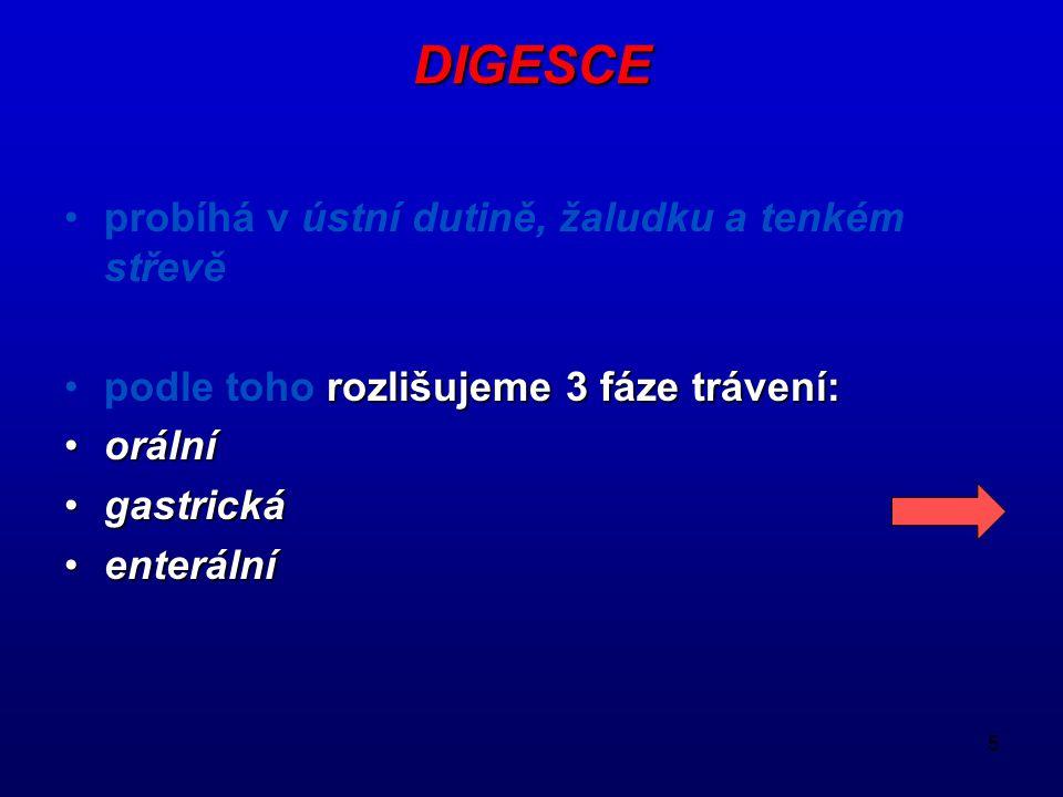 5 DIGESCE probíhá v ústní dutině, žaludku a tenkém střevě podle toho rozlišujeme 3 fáze trávení: orální gastrická enterální