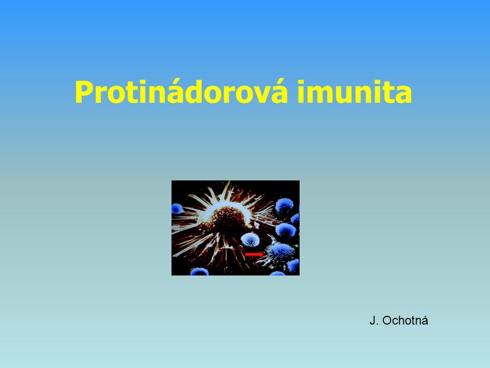 Imunopatologická reakce oddáleného typu (reakce typu IV) ● přecitlivělost oddáleného typu (DTH, delayed type hypersensitivity) ● lokální reakce způsobená T H 1 buňkami a monocyty / makrofágy (tato reakce fyziologicky slouží k eliminaci interacelulárních parazitů makrofágů) ● imunizace antigenem → vznik antigenně specifických T H 1 buněk (i paměťových buněk) ● po opakovaném kontaktu s antigenem → za 12 – 48 hodin vzniká lokální reakce – granulom (infiltrace T H 1 buňkami a makrofágy) ● při dlouhotrvající stimulaci se makrofágy mohou měnit na mnohojaderná syncytia