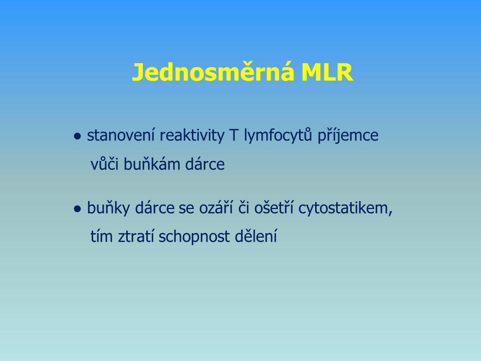 Jednosměrná MLR ● stanovení reaktivity T lymfocytů příjemce vůči buňkám dárce ● buňky dárce se ozáří či ošetří cytostatikem, tím ztratí schopnost děle