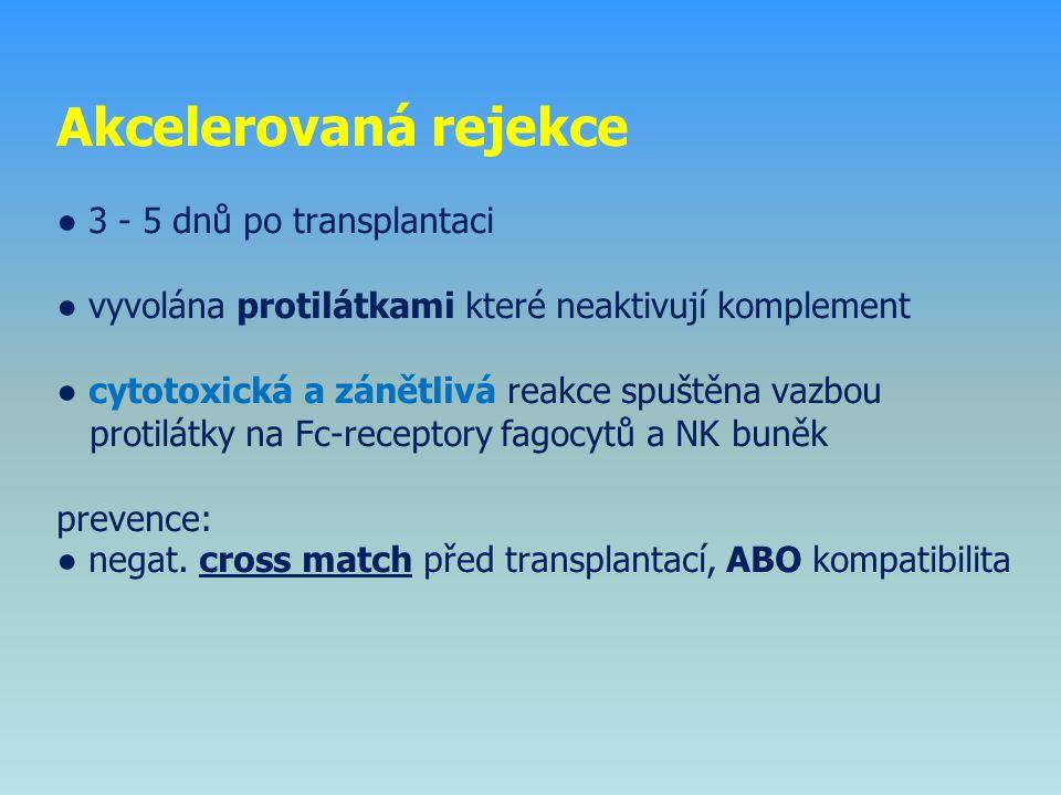 Akcelerovaná rejekce ● 3 - 5 dnů po transplantaci ● vyvolána protilátkami které neaktivují komplement ● cytotoxická a zánětlivá reakce spuštěna vazbou