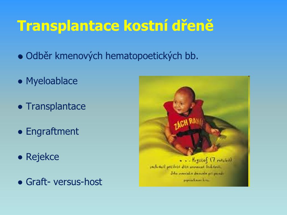 Transplantace kostní dřeně ● ● Odběr kmenových hematopoetických bb. ● Myeloablace ● Transplantace ● Engraftment ● Rejekce ● Graft- versus-host