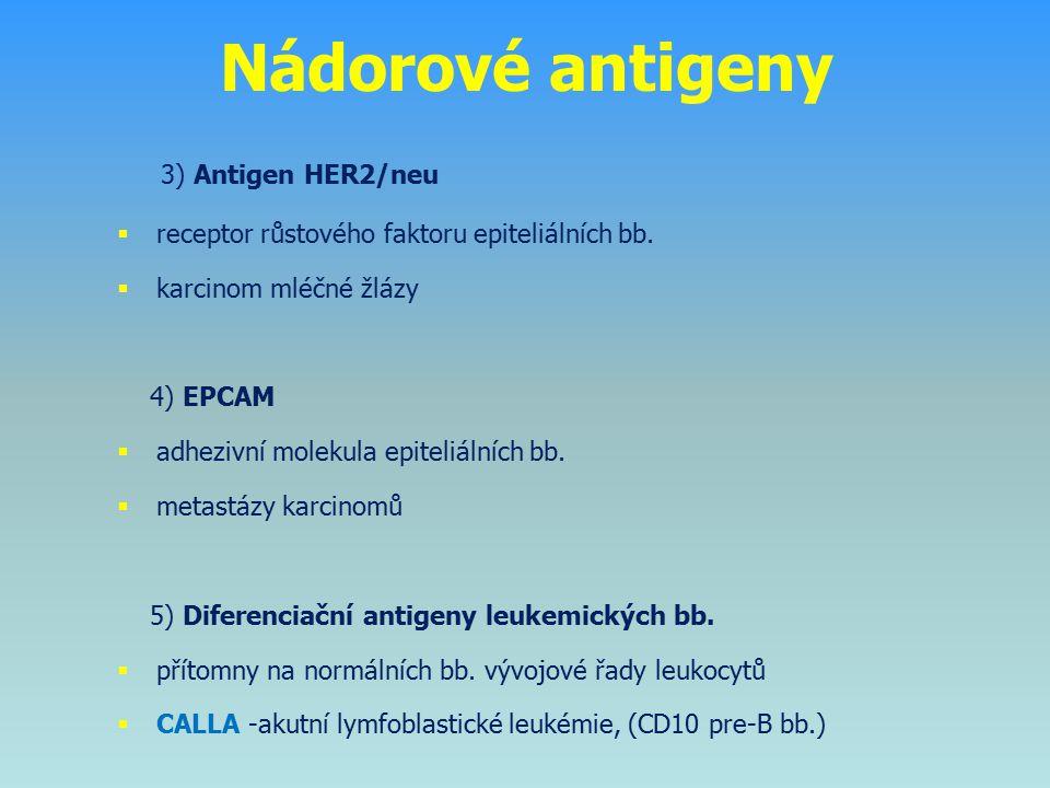 3) Antigen HER2/neu  receptor růstového faktoru epiteliálních bb.  karcinom mléčné žlázy 4) EPCAM  adhezivní molekula epiteliálních bb.  metastázy
