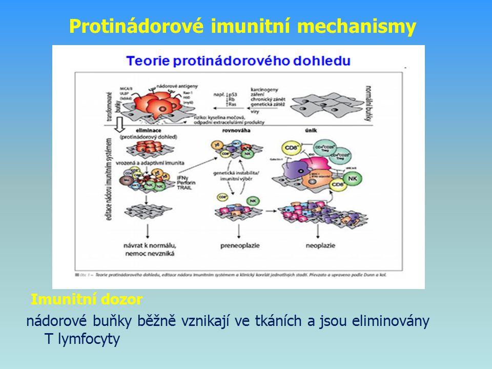 ● vyvolány převážně protilátkami IgG IgG → vazba na antigen → vznik imunokomplexů ● imunokomplexy - aktivují komplement → přilákání neutrofilů, aktivace mastocytů - váží se na Fc receptory fagocytů Imunopatologická reakce založená na tvorbě imunokomplexů (reakce typu III)