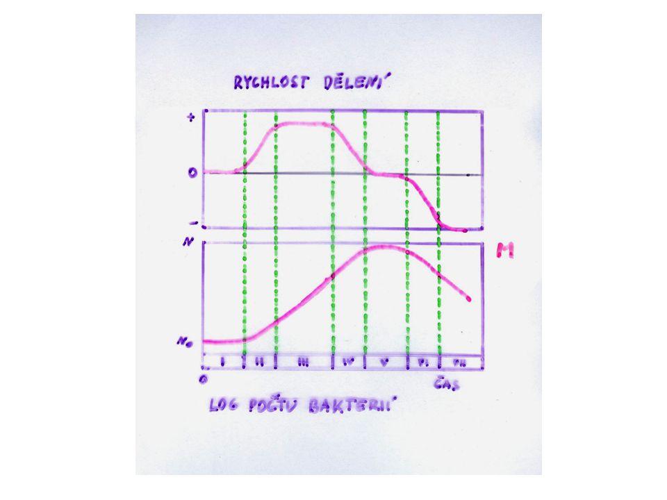 Matematické charakteristiky Délka lagu Generační doba Doba zdvojení (T) Počet buněk (N) Počet dělení (generací)0124n Počet buněk12482 n Obecná rovnice (pro exponen.