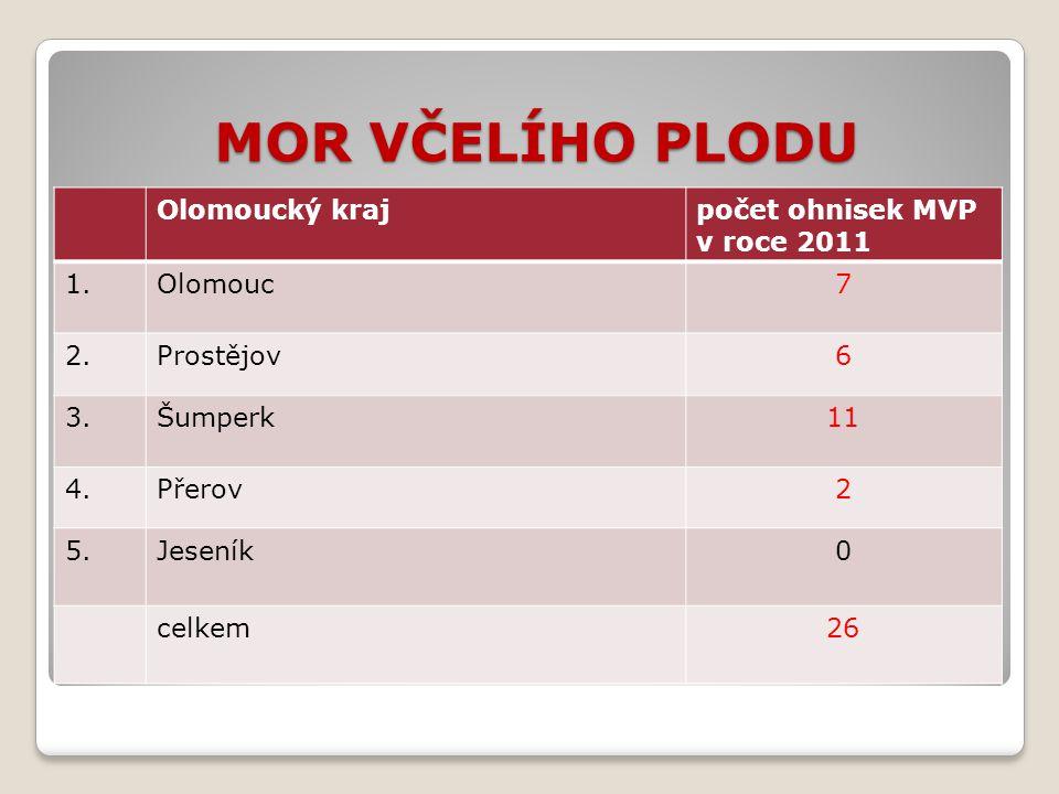 MOR VČELÍHO PLODU Olomoucký krajpočet ohnisek MVP v roce 2011 1.Olomouc7 2.Prostějov6 3.Šumperk11 4.Přerov2 5.Jeseník0 celkem26
