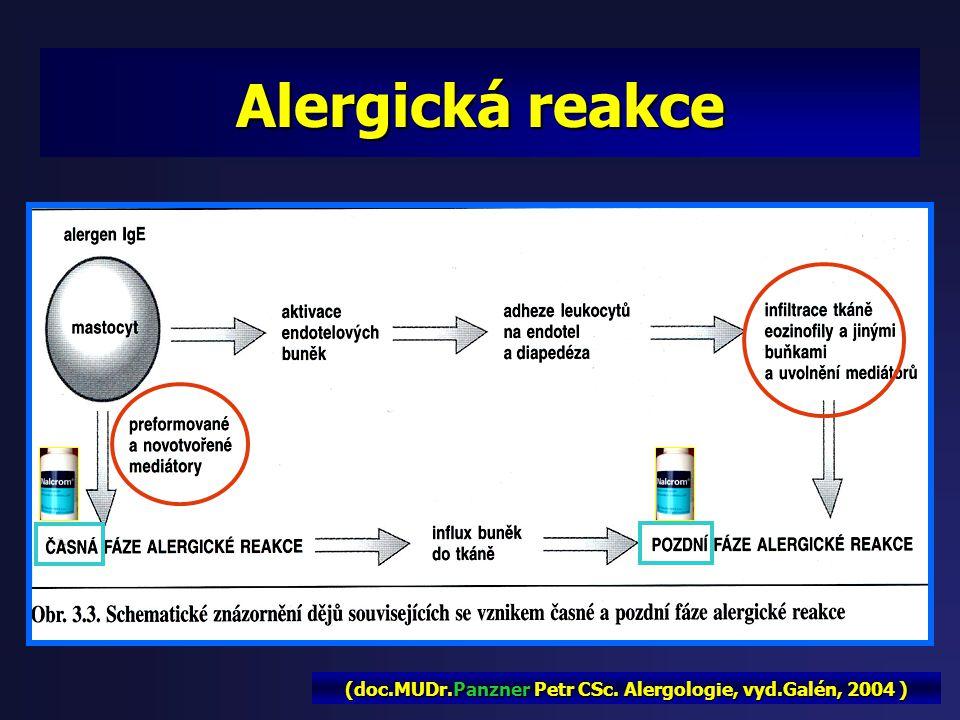 Žírné buňky (mastocyty): - Vznik v kostní dřeni cíl.tkáň - Jejích množství je dáno lokálními podmínkami, alergeny, Ig, cytokiny … alergeny, Ig, cytoki