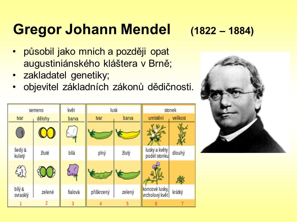 Gregor Johann Mendel (1822 – 1884) působil jako mnich a později opat augustiniánského kláštera v Brně; zakladatel genetiky; objevitel základních zákon