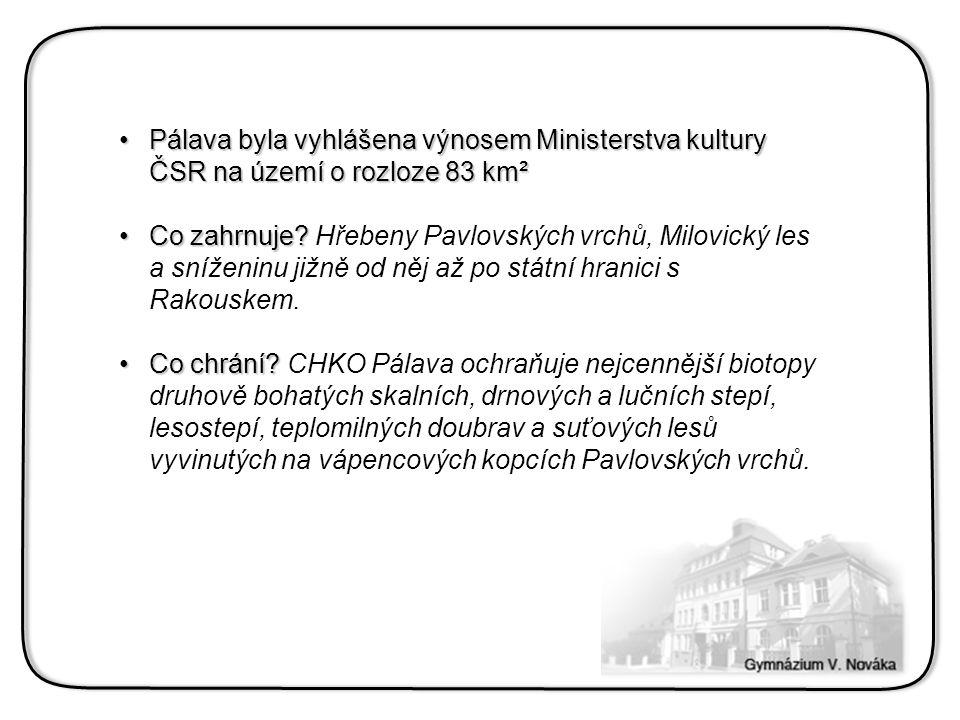 Pálava byla vyhlášena výnosem Ministerstva kultury ČSR na území o rozloze 83 km²Pálava byla vyhlášena výnosem Ministerstva kultury ČSR na území o rozloze 83 km² Co zahrnuje?Co zahrnuje.