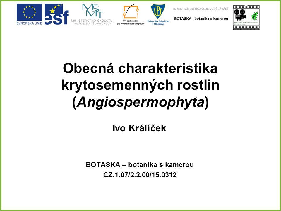 Obecná charakteristika krytosemenných rostlin (Angiospermophyta) BOTASKA – botanika s kamerou CZ.1.07/2.2.00/15.0312 Ivo Králíček
